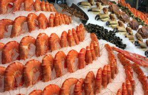 Etalage de fruit de mer